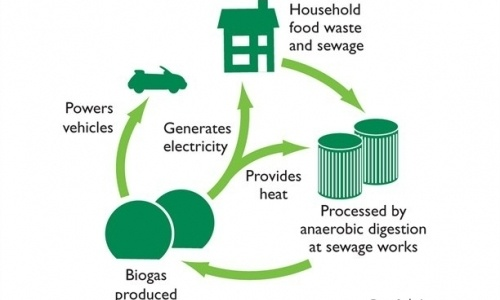 Biogas-MSW