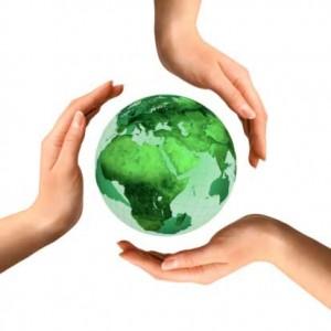 environmentalassessment