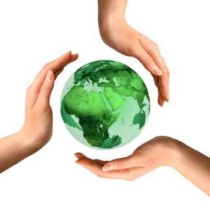 environmental-assessment