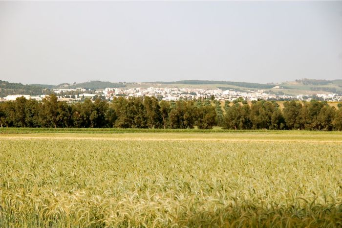 agriculturemiddleeast