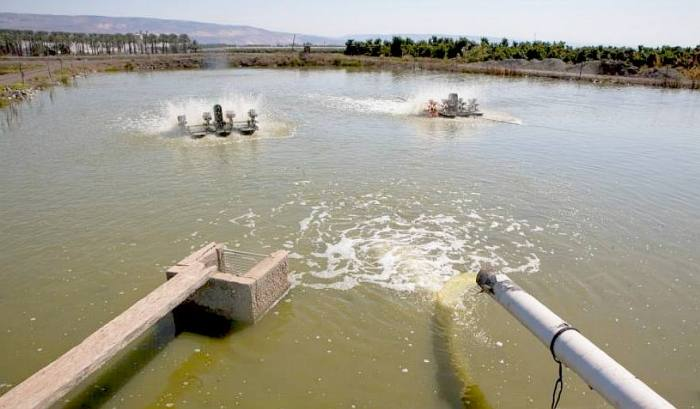 Pollution and mismanagement has severely damaged the Jordan River