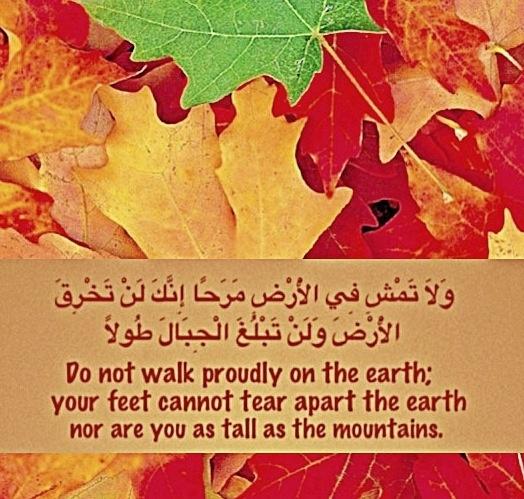quran-environment-protection