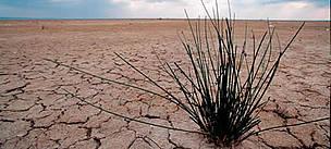 tunisia-climate-change