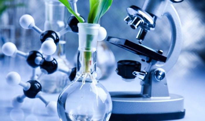 biobasedpolymerspackaging