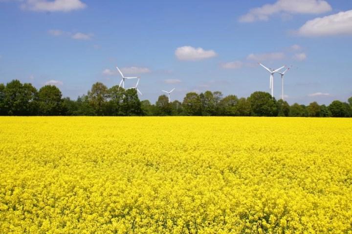 Ecomodernistisch item Lubach breekt debat kernenergie open