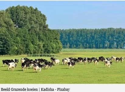 Concentreer landbouwgebieden: Een advies voor ruimtelijke ordening