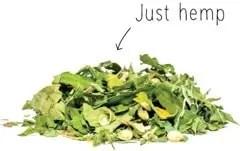 just hemp thee