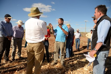 Group of farmers in a discussion