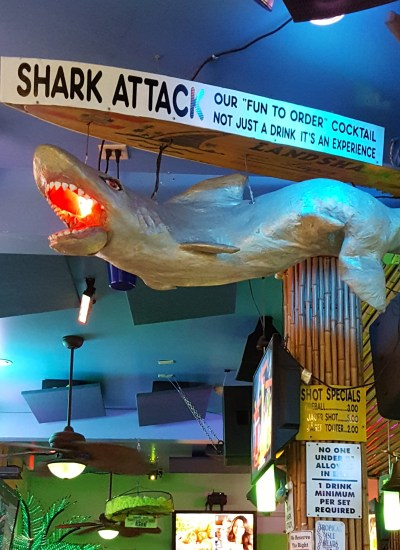 Replica of shark hanging from ceiling