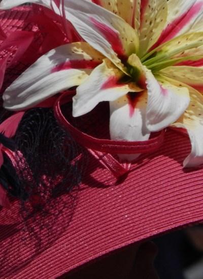 Stargazer lily on pink straw hat