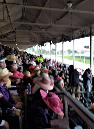 Crowd wearing hats at the races