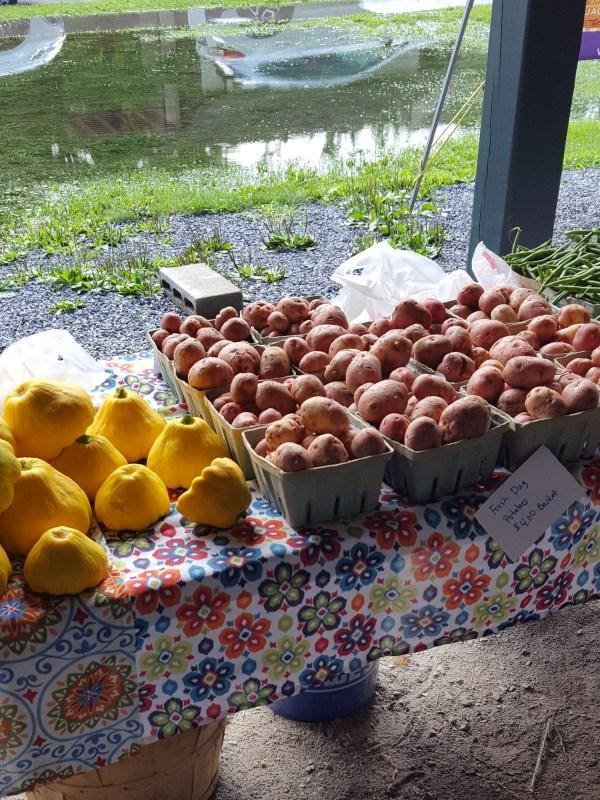 Potatoes and Squash