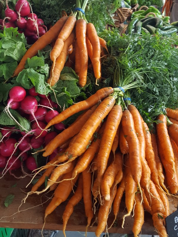Bunches of radishes and carrots