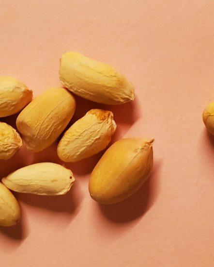 non-soaked peanuts