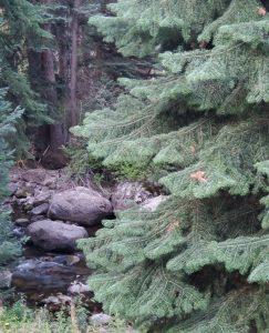 View of Gore Creek