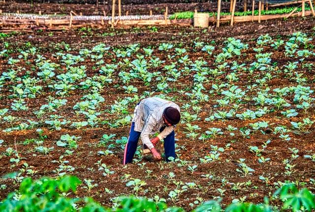 8º Congresso Brasileiro de Fertilizantes