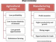 Dual economy | Economics Help