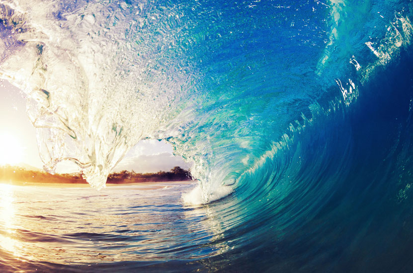 3 Keys to Selling Your Business: Lessons From Surfing