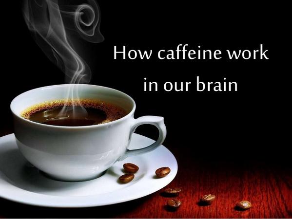 how caffeine work in your brain