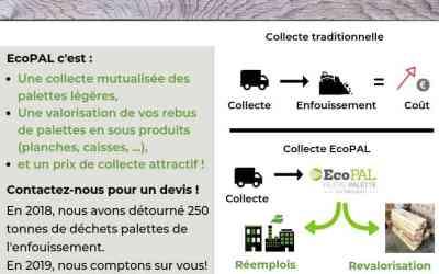 EcoPAL se lance dans la collecte mutualisée de palettes en bois