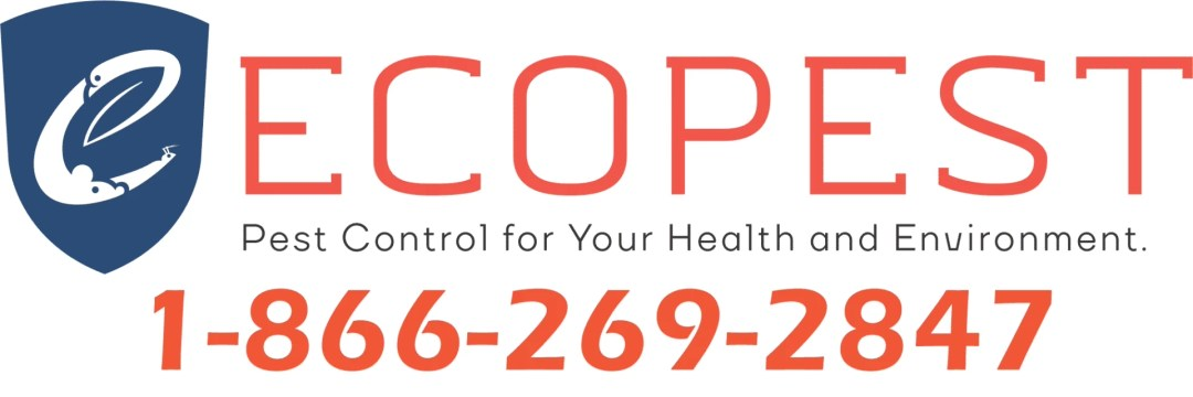 Ecopest : Pest Control : Edmonton