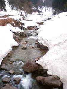 この流れの上流が清水集落です。 雪融け水で流れの勢いが増しています。