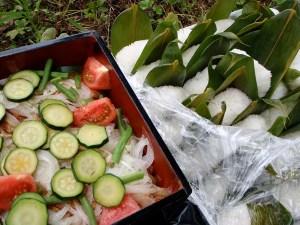 塩むすびと、どっさり野菜がのった鶏の南蛮漬け。お米はもちろん、野菜全部が祐子さん作。