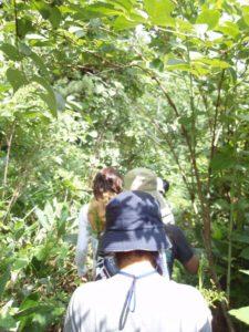 「ジャングルのような」と聞いて行かずにはいられなくなった参加者たち。