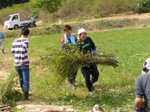 枝を集めて、池に打ち込んだ柵の間に通し、昆虫が生息しやすいようにします