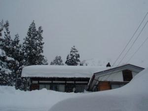落下式の屋根の雪と落ちて貯まった雪がつながってしまった家も何軒が出てきています。