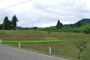 毎年大会前に実行委員長の笛木幸治さんが描く大会名の草刈りアート