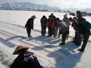 たまたま見学することができた、伝統技術「雪さらし」。反物を雪の上に広げ、日光の熱によって雪が昇華する際の化学反応で真っ白にさらす。