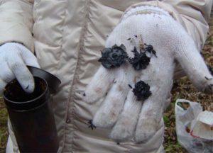 火の中に入れて蒸し焼きにすること小一時間。こんな炭が出来ました。