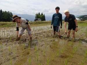 田んぼに両手を突っ込んで土をかき回しながら、雑草を根こそぎはぎ取る。なかなか大変。