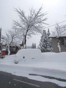 一昨日降り始めるまで、この車の上にも下にも雪はありませんでした。今朝は、外にとめてあった車はみんなこんなふうです。
