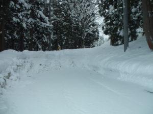 栃窪峠へと続く道ですが、除雪しないので、雪で塞がっています。