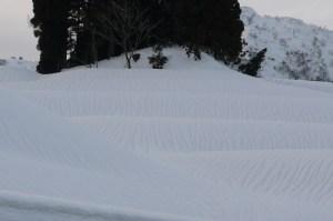 雪の表面全体に筋のようなものが見えます。雪解けによるものです。