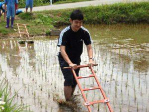 「くるま」と呼ばれる草を取る道具に挑戦