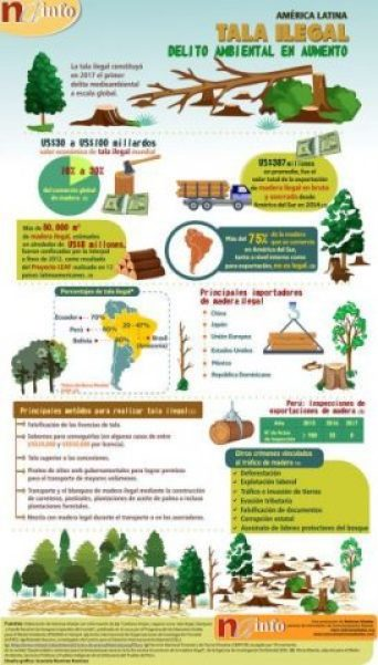 tala, madera, bosques, Amazonia, indígenas, biodiversidad