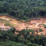 Los bosques como socioecosistemas: una nueva perspectiva para el abordaje del desarrollo forestal