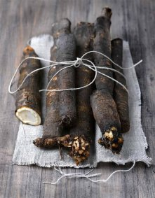 raíces, nutrición, recetas, alimentos