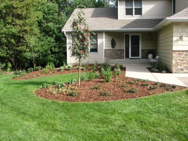 ecoscapes sustainable landscaping