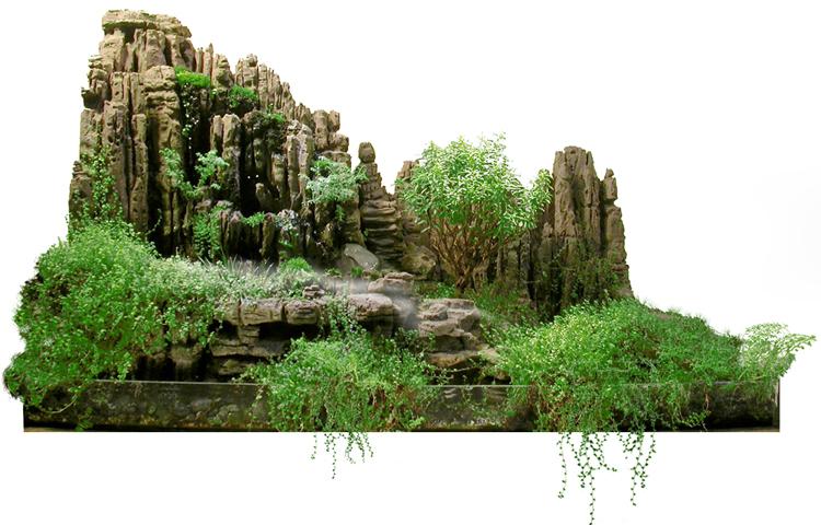 jardin japonais miniature interieur ou