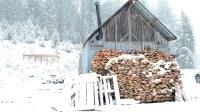 Living Off The Grid  Building A $300 Off The Grid Cabin ...