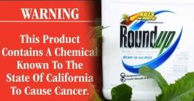 Resultado de imagen para ROUNDUP AND CANCER