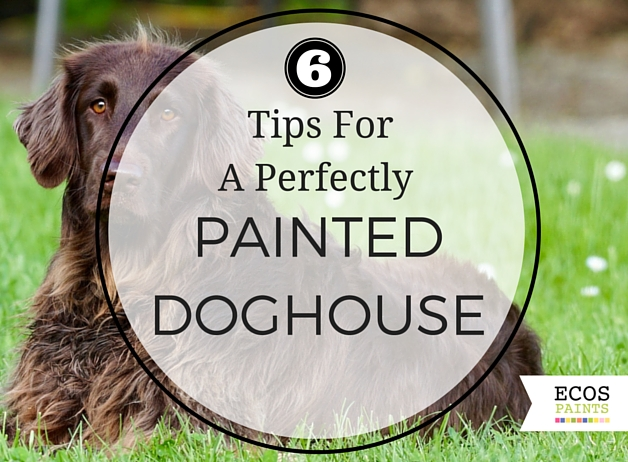 6 Tips For A Perfectly Painted Doghouse ECOS Paints Blog