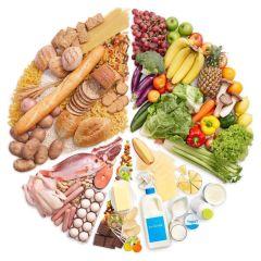 Rueda de alimentación sana