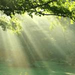 Ecoterapia