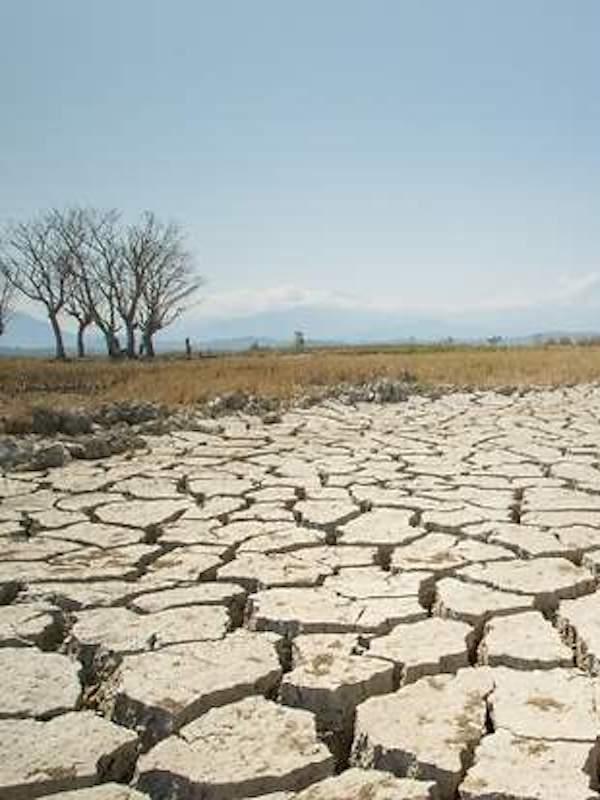Todos los países condenan al planeta a un calentamiento global de catastróficas consecuencias