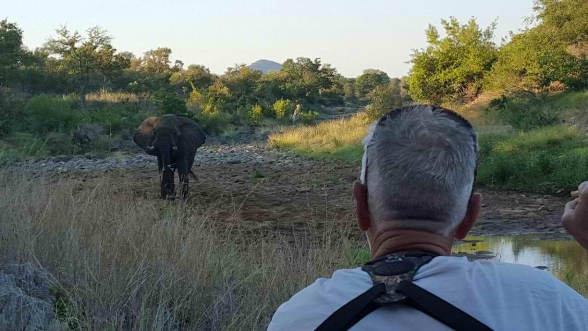 Billy_Elephant-encounter_Selati-2